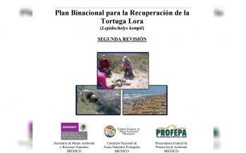 Plan Binacional para la Recuperación de la Tortuga Lora