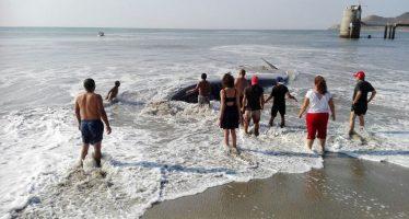 Pescadores y habitantes de Salina Cruz en Oaxaca, rescatan y liberan un  ejemplar juvenil de ballena azul