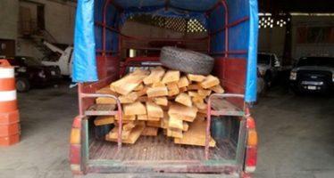 Detienen a dos personas con 64 piezas de tablones de cedro rojo (Cedrella odorata) en Hidalgo