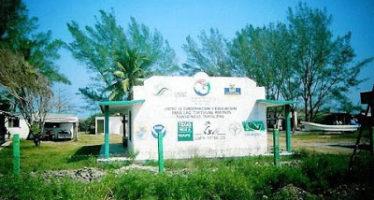 Santuario Tortuguero Rancho Nuevo en Tamaulipas