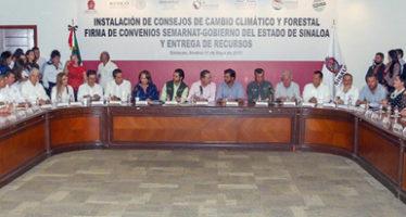 Entregan Plan de Manejo del APFF Meseta de Cacaxtla, el ANP más grande de Sinaloa y refugio del jaguar (Panthera onca)