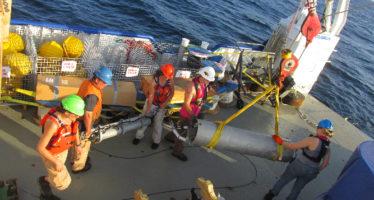 Científicos mexicanos investigan procesos ecológicos y ciclos biogeoquímicos en el Golfo de México