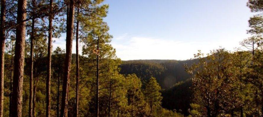 Tutuaca: Área natural protegida