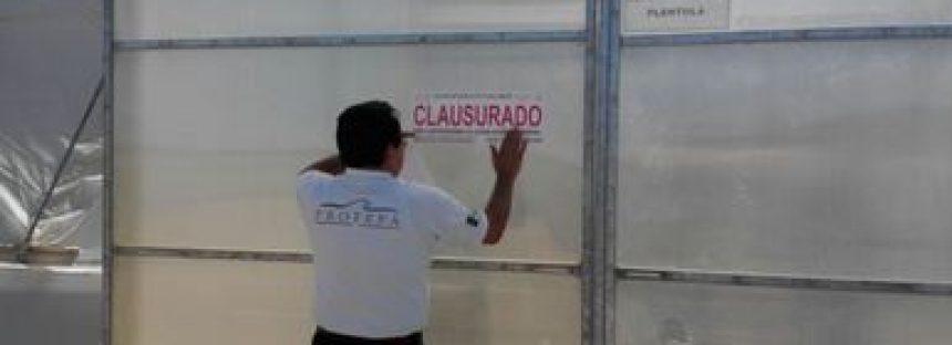 Cambiaron uso de suelo en terrenos forestales de la Reserva de la Biosfera El Vizcaíno, BCS: están clausurados