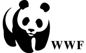 WWF tiene vacantes disponibles