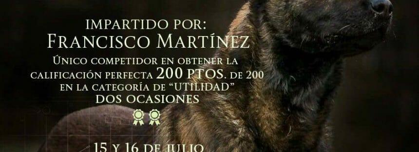 Seminario: La obediencia como base de los deportes caninos