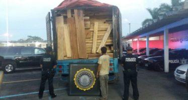 Aseguran 24 metros cúbicos de maderas preciosas tabasqueñas, en Mérida