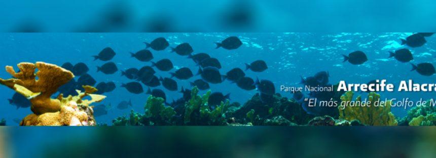 Investigan encallamiento de embarcación en Parque Nacional Arrecife Alacranes