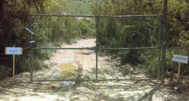 Suspenden cambio de uso de suelo en terrenos forestales sin autorización