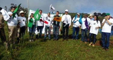 Se suma Michoacán a campaña nacional de reforestación