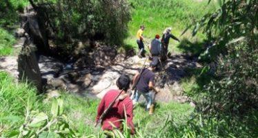 Denuncian cacería ilegal de una especie exótica en Hidalgo: ciervo rojo (Cervus elaphus)