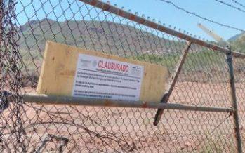 Clausuran predio en Guaymas, por cambio de uso de suelo ilegal y daño a la flora
