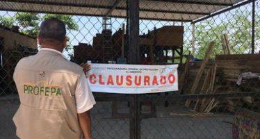 Se clausuran dos Centros de Almacenamiento de Materias Primas Forestales en el estado de Colima