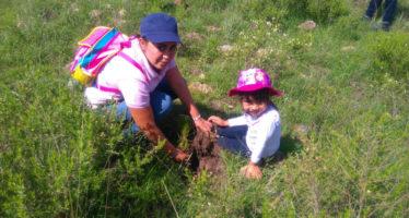 Se llevará a cabo histórica jornada de reforestación en Cuanajo