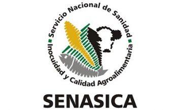 Profesional de proyecto para el Comité de Sanidad e Inocuidad Acuícola de Baja California