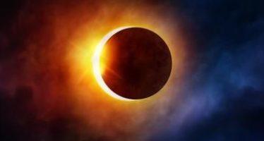 Los animales son afectados por un eclipse solar total y cambian su reloj biológico