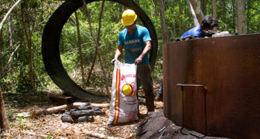 El Brasero de Oriente, iniciativa campesina de manejo y aprovechamiento sustentable de carbón vegetal en San Felipe Oriente *