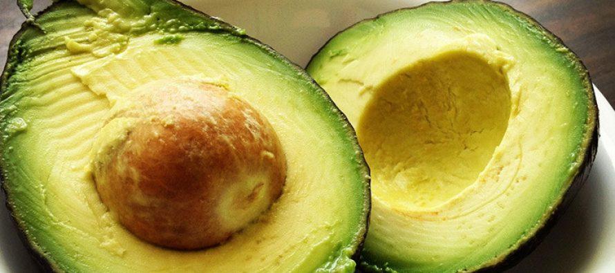 Científicos encuentran insospechadas propiedades medicinales en la piel de la semilla de aguacate