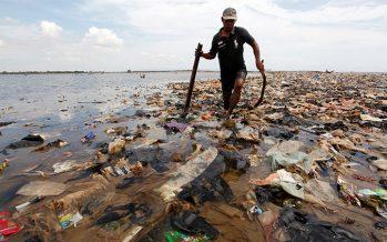 Proponen que la 'isla' de plástico en el Pacífico sea un país (y ya tiene su primer ciudadano)