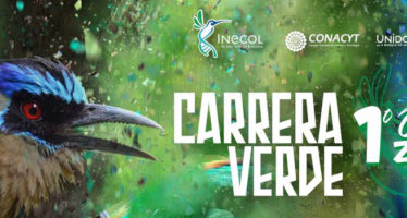 INCECOL invita a su: Carrera Verde 2017