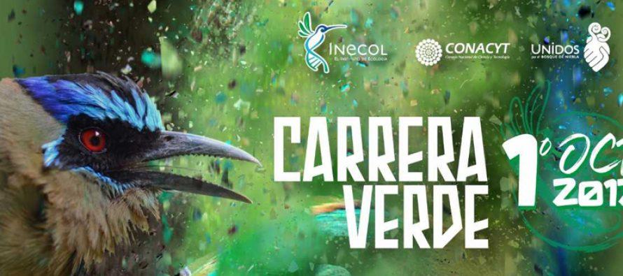 INCECOL invita a su: Carrera Verde 2017