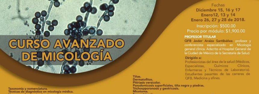 Curso avanzado de Micología