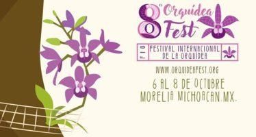 Festival Internacional de la Orquídea, del 6 al 8 de Octubre
