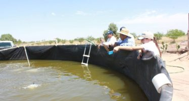 Avanza la capacitación de pescadores y acuacultores en San Felipe, San Quintín y Guerrero Negro en Baja California