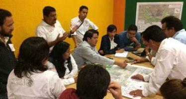 Trabaja México para desarrollar un Programa de Adaptación al Cambio Climático de Mariposa Monarca