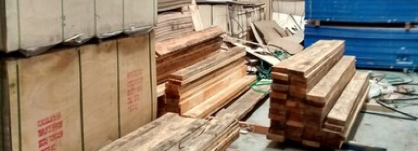 Decomisan 16 metros cúbicos de madera aserrada de Pino en Yucatán