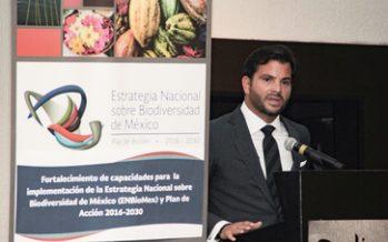 Taller para fortalecer la Estrategia Nacional sobre Biodiversidad de México