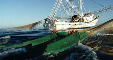 Hace trampa GUIJON IX, un barco camaronero tamaulipeco; la Profepa lo asegura