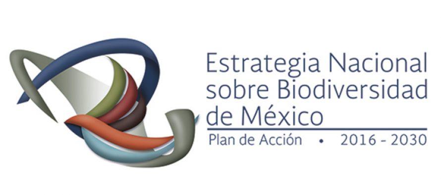 Urge proteger la biodiversidad mexicana y contener la extinción de especies