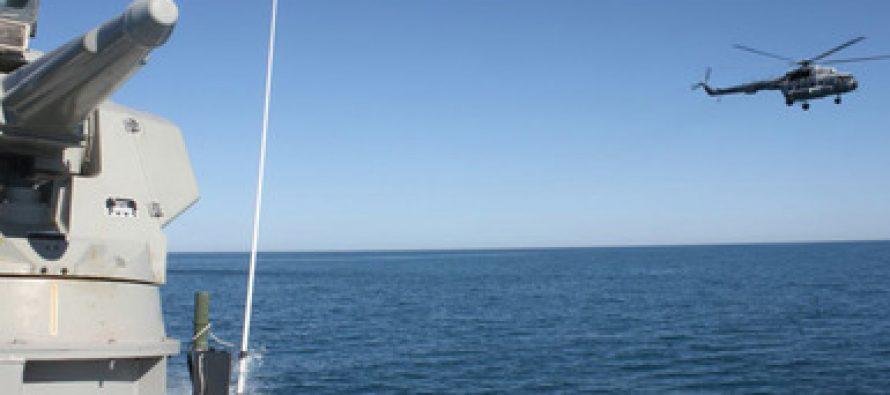 Con una vaquita marina (Phocoena sinus) casi extinta, hoy el Alto Golfo de California es la zona más vigilada de México