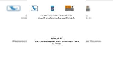 Tilapia 2020: Prospectivo del sistema-producto nacional de tilapia en México