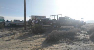 Decomisan 4.5 km de redes para totoaba y una panga menor