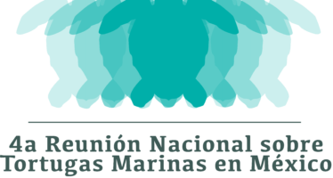 4a. Reunión Nacional sobre Tortuga Marina en México y 1a. Reunión Internacional sobre Tortugas Marinas del Pacífico Oriental