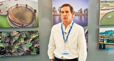 La acuacultura puede ser el instrumento para la protección y conservación de la totoaba (Totoaba macdonaldi) silvestre