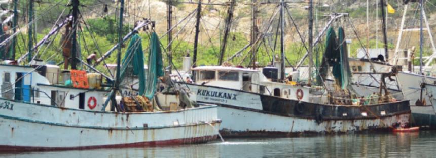 Inicia programa de vinculación productiva para sector pesquero, en Campeche