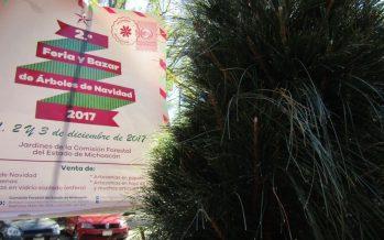 En Michoacán, feria y bazar de árboles de Navidad