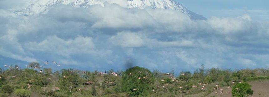El número de sitios naturales de Bienes Patrimoniales del Mundo afectados por el cambio climático casi se duplicó en tres años – IUCN
