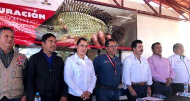 Abren lonja pesquera en la presa El Chique de Zacatecas