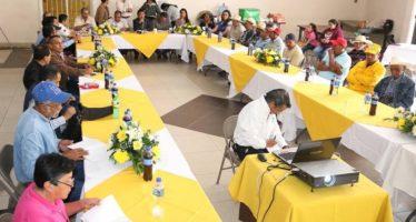 SEGUIMOS AVANZANDO EN TEMAS DE SANIDAD FORESTAL