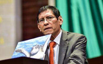 Reforma a Ley de Vertimientos en el mar, provocará daño ambiental severo: morena
