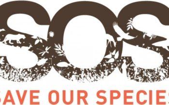 IUCN – SOS Salva Nuestras especies avanza* **