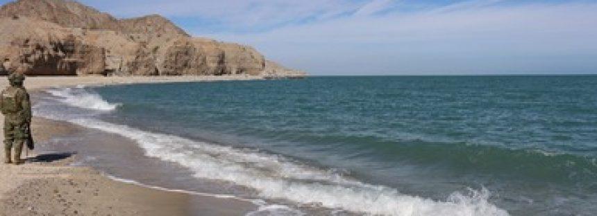 En Alto Golfo de California, programa de campo de rescate de la vaquita suspendido: sigue vigilancia en zona de prohibición de pesca