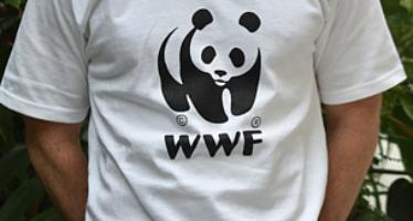 Convoca WWF por una plaza de facilitador de campo en el Alto Golfo de California