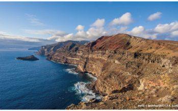 Después de 15 años de acciones, la restauración ambiental en Isla Guadalupe, BC, es un ejemplo de éxito