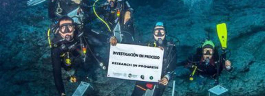Tras polémica global, inician investigaciones marinas en el Parque Nacional Revillagigedo y prospección de uso público
