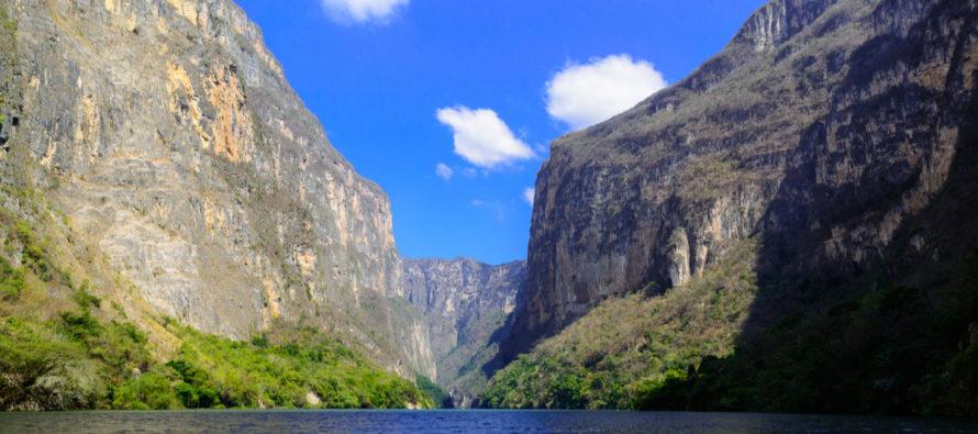 Aprueba Senado de México Ley General de Biodiversidad que incorpora Protocolo de Nagoya al acceso a recursos genéticos